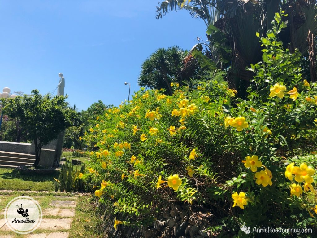 yellow flowers in Han Mac Tu Tomb in Ghenh Rang, Quy Nhon, Vietnam