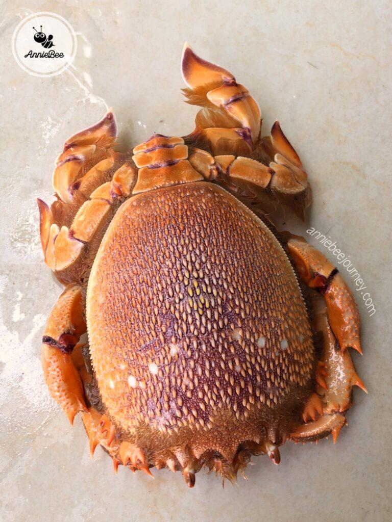 Huynh De crab in Quy Nhon, Vietnam