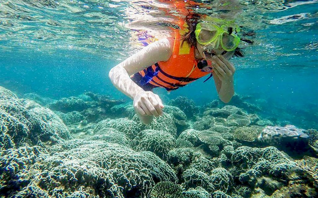 Snorkeling with coral reef at Ky Co island in Quy Nhon, Vietnam